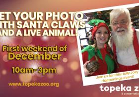 Santa Claws and a live animal