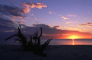 State Park Stump Pass Beach Sunset 1
