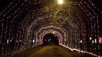 Winterland Light Show Tunnel