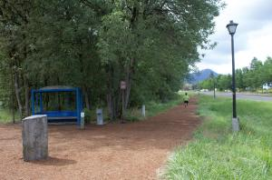 Amazon Running Trail