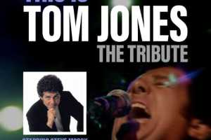 This is Tom Jones - The Tribute - Cover Photo
