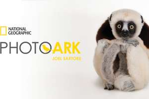 The National Geographic Photo Ark at Museum of Discovery
