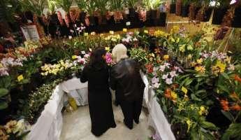 Central Coast Orchid Show & Sale