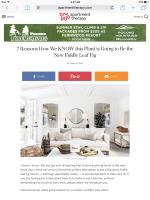 2017 Summer Marketing Campaign - Online - Apartmenttherapy.com - Pocono TreeVentures