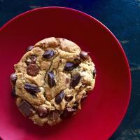 Blackbird Coffee Cookie