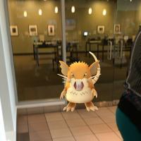 GEM pokemon