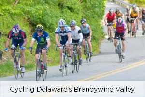 Brandywine Valley Cycling