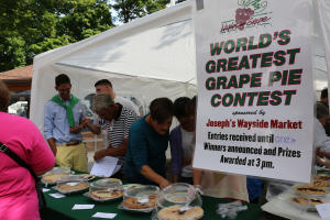 2015-naples-grape-festival-naples-people-picking-pies