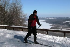 finger-lakes-harriet-hollister-state-park-winter-solo-cross-country-skier-passing-overlook-blue-skies