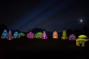 Nightscape at Longwood Gardens