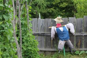 scarecrow at Genesee Country Village & Museum