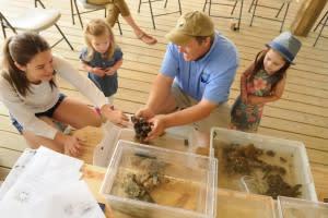 WB kids camps Coastal ed center