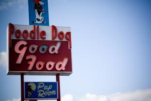Poodle Dog in Fife