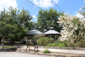 Conservation Plaza bench