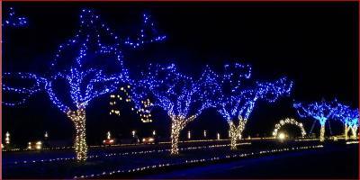Fantasy Lights in Spanaway