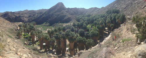Indian Canyons