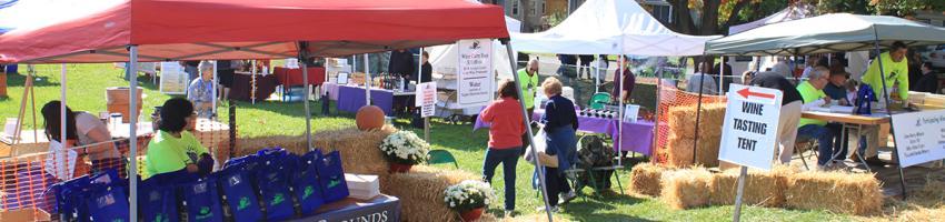 naples-grape-festival-wine-tent