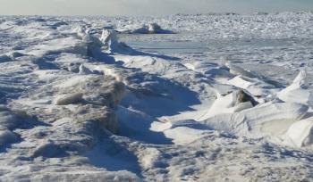 Shelf Ice at Indiana Dunes