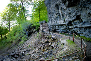 Walk in the Woods at Thacher Park - Image