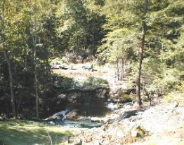 "A view of Roaring Brook from the Pipeline Trail, where another bridge will be constructed on the new ""Eagle's Nest"" trail."