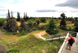 Spruce Woods Provincial Park