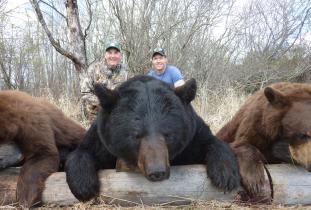 Another Booner Black Bear