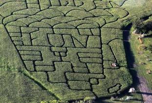 Steinbach Corn Maze and Adventures