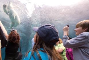 Assiniboine Park Zoo - Journey to Churchill