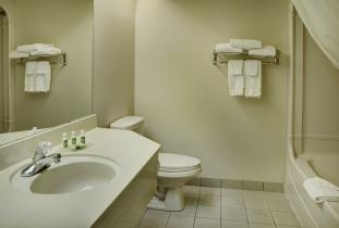 Brandon Lakeview Inn & Suites Guest Room Bath