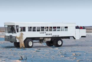 full arctic crawler