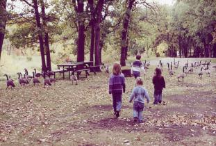 Victoria Park Campground and Bird Sanctuary