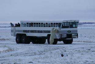 Tundra Vehicle