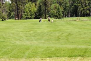 Thompson Golf