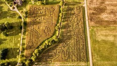 Hogan Farms Corn Maze 2018
