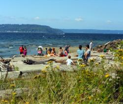 Top 5 Brown Bag Lunch Spots in Seattle Southside: Saltwater State Park