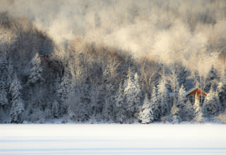 WinterWonderlandMoG