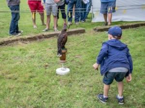 Wild America Nature Festival