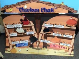 Chicken Chat Board