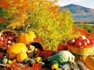 Fall Driving Tours Catskills 6 - Photo by Delaware County