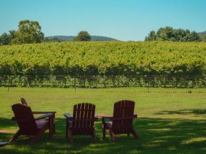 Bull Run Mountain View At The Winery At La Grange