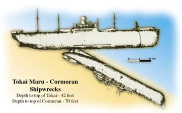 Tokai-Cormoran-wrecks
