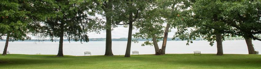 belhurst-benches