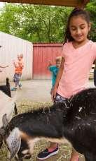 Roger Williams Park Zoo & Carousel Village