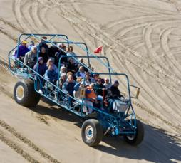 Dune Buggy in Florence by Todd Cooper