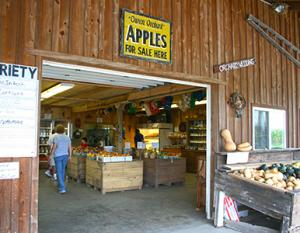 Owens Orchards Apple Picking