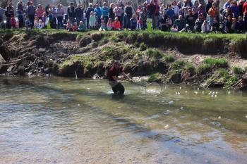 Race those rubber ducks at Ellis Park in Danville! (credit: Danville Parks & Recreation Facebook page)