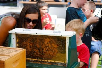 Celebrate pollinators at the annual McCloud Honeybee Fest every August.