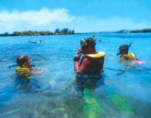 Aquatic Preserve Snorkeling Ecoventure