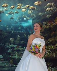 Bride at Aquarium vertical