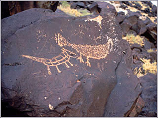 Petroglyph turkey by Petroglyph National Monument - Explore the culture of Native Americans in New Mexico